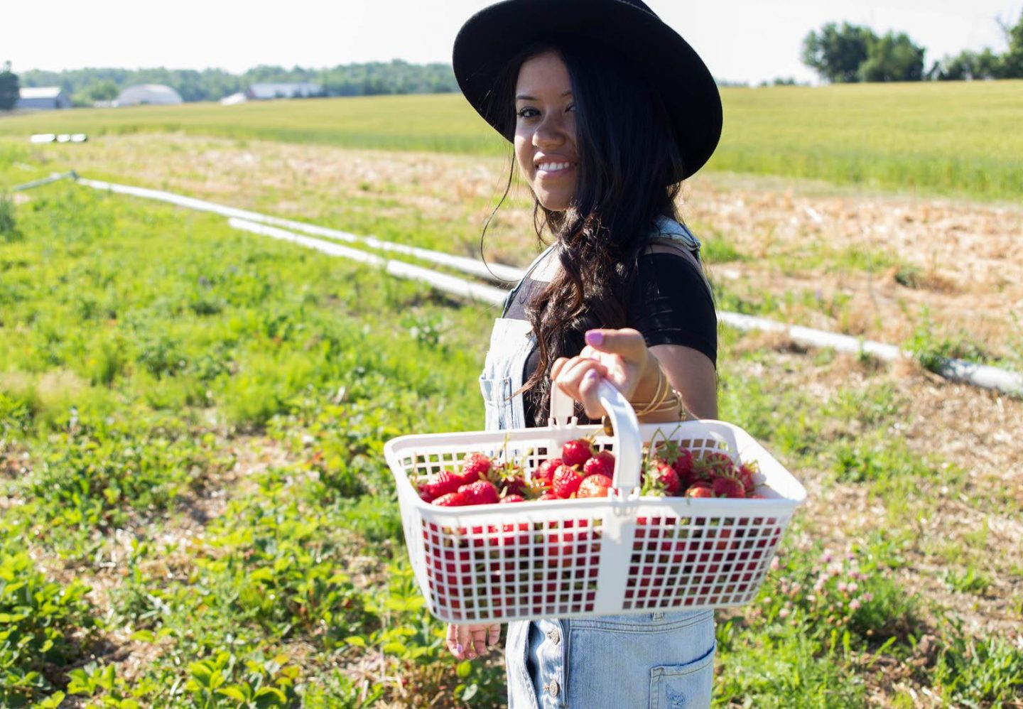 Strawberry Picking06252016_3177