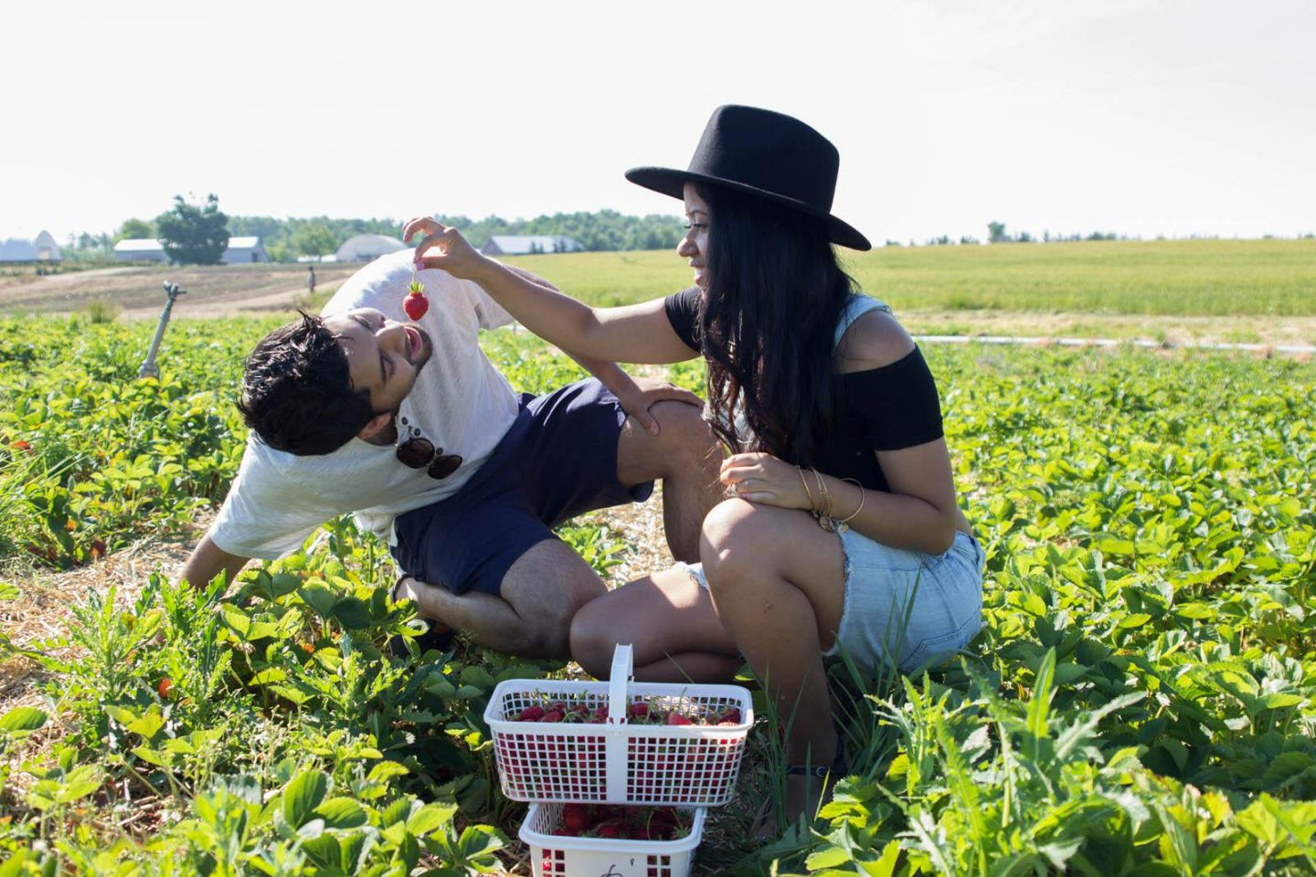 Strawberry Picking06252016_3212